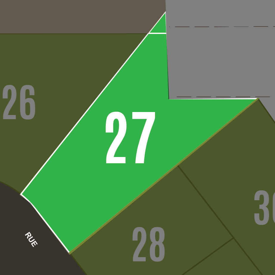 Terrain #27